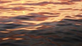 Oceaangolven rustig patroon stock video