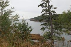 Oceaaninham in het Nationale Park van Acadia in Maine Royalty-vrije Stock Afbeelding
