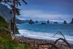 Oceaankust en overzeese stapels Stock Fotografie