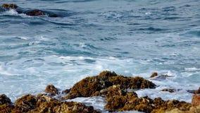 Oceaankust Vuurtoren van San Pedro de Moel De golven verplettert de ertsader stock footage