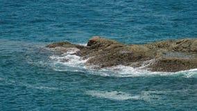 Oceaankustgolven stock footage