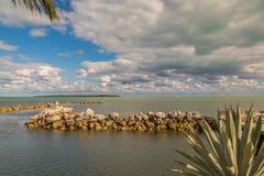 Oceaanmening met Palmen en Rotsen en Mooie Wolken Royalty-vrije Stock Afbeeldingen