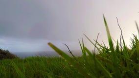Oceaanmening van de heuvel op een regenachtige dag, groene vegetatie, regen, bewolkte hemel stock footage