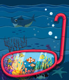 Oceaanscène met overzeese dieren Stock Fotografie