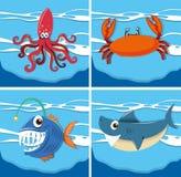 Oceaanscène met overzeese dieren onderwater Stock Afbeelding