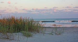 Oceaanstrand met overzeese haver bij zonsondergang Royalty-vrije Stock Afbeelding