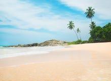 Oceaanstrand tegen rots en palmen in zonnige dag Stock Foto
