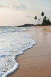 Oceaanstrandgolven tegen rots en palmen in zonsondergangtijd Stock Foto