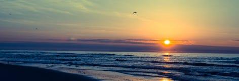 Oceaanstrandzonsopgang met zeemeeuwen het vliegen Royalty-vrije Stock Afbeelding