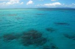 Ocean. Great barrier reef in Cairns, Australia Stock Photography