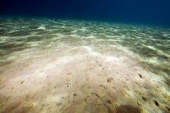 Ocean Stock Photo