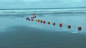 ocean zbiory