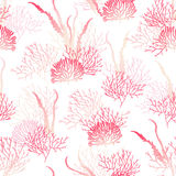 Ocean algae  seamless vector print. Delicate red and white pattern Royalty Free Stock Photos