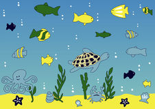 Free Ocean And Sea Life Royalty Free Stock Photos - 2845358