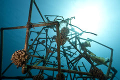 Ocean and artificial reef Royalty Free Stock Photos