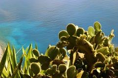 ocean atlantycki Zdjęcie Royalty Free