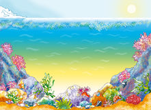 Ocean background. With seashell and  corals Stock Photo