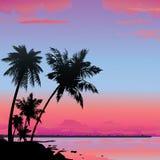 Ocean beach. Royalty Free Stock Photo