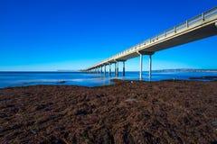 Ocean Beach Pier Stock Photo