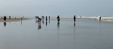 Ocean Beach Scene. Long Beach at Ocean Shores Washington Stock Image