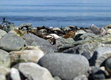 Ocean beach stones summer day Stock Photo