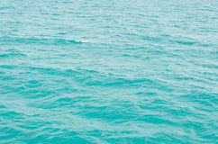 Ocean Royalty Free Stock Images