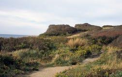 Ocean Bluff Trail. Shadmoor State Park, Montauk, New York. Winding sandy trail along bluffs at ocean`s edge stock photo