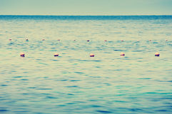 Ocean Buoys. Simple composition of ocean buoys in rich blue water Royalty Free Stock Images