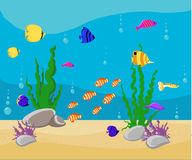 Ocean Cartoon underwater world with fish, plants, island Aquarium Fish set Stock Image