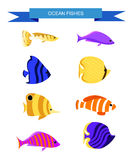 Ocean Cartoon underwater world with fish, plants, island Aquarium Fish set Stock Images