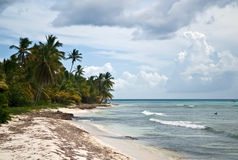 Ocean coast Stock Photography