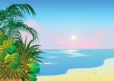 Ocean coast. Stock Image
