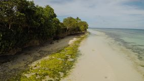 The ocean coast with beautiful coral reefs and views. Aerial view. The ocean coast with beautiful coral reefs and views. Aerial view stock footage
