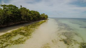 The ocean coast with beautiful coral reefs and views. Aerial view. The ocean coast with beautiful coral reefs and views. Aerial view stock video footage