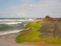 Ocean coast Royalty Free Stock Photo