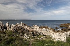 Ocean and coast landscape in Hermanus, South Africa Royalty Free Stock Image
