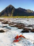 Ocean coast Mountain, Norway Royalty Free Stock Photos