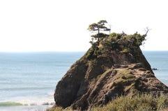 Ocean Coast Sea Rock Royalty Free Stock Photography