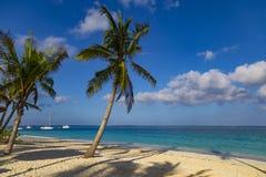 Ocean coast of Zanzibar island. Village Kendwa. Tanzania. Africa. Beach resort. Palm trees, sand, turquoise ocean against the blue cloudy sky. Ocean coast of stock photo