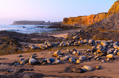 Ocean coastline. In Peniche, Portugal Royalty Free Stock Image