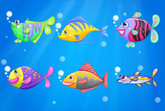 An ocean with colorful fishes Royalty Free Stock Images
