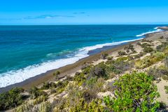 Ocean cost landscape of Peninsula Valdes, Patagonia, Argentina Royalty Free Stock Image