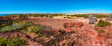 Ocean cost landscape of Punta Tombo, Patagonia, Argentina Stock Photography