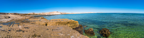 Ocean cost landscape of Valdes, Patagonia, Argentina Royalty Free Stock Images
