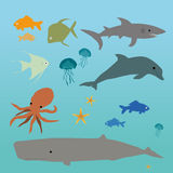 Ocean creatures. A collection of underwater creatures like fish, whale, shark, octupus, jellyfish Royalty Free Stock Photo