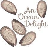Ocean Delight Stock Images