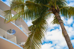 Ocean Drive Royalty Free Stock Photography