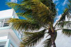 Ocean Drive Stock Photography
