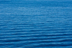 ocean fala