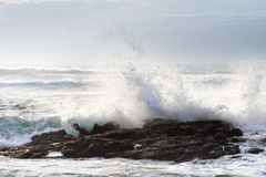 ocean fala fotografia stock